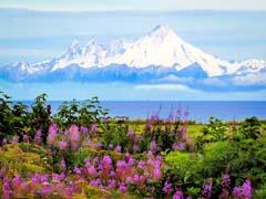 Alaska erleben